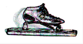 logo_schaats